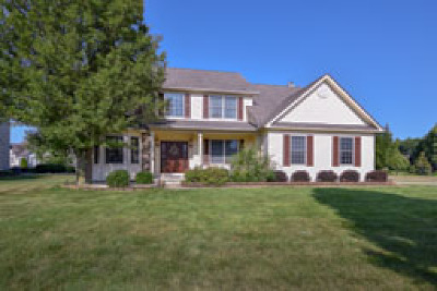 Olmsted Township Single Family Home For Sale: 27371 Maurer Drive