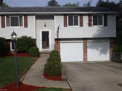 Kent Single Family Home For Sale: 1006 Erin Drive