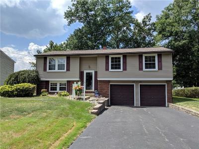 Youngstown Single Family Home For Sale: 2220 Elm Trace Street