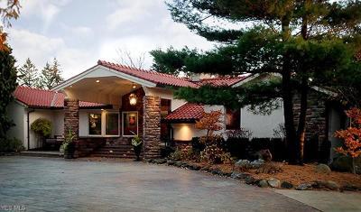 North Royalton Single Family Home For Sale: 4861 Royalton Road