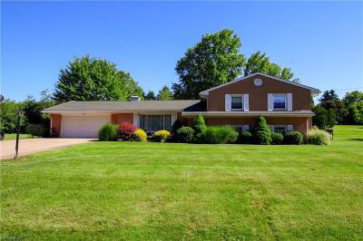 Columbiana County Single Family Home For Sale: 48673 Lakeview Circle