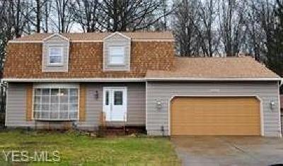 North Ridgeville Single Family Home For Sale: 6629 Stoney Ridge Road