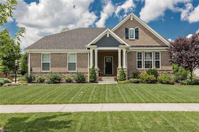 Twinsburg Single Family Home For Sale: 2988 Steffan Woods Drive