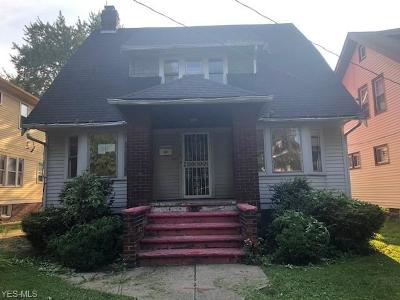 Cleveland Single Family Home For Sale: 1034 E 169th Street