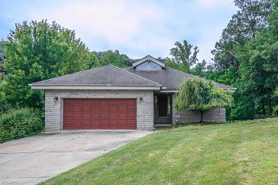 Seven Hills Single Family Home For Sale: 3203 Forest Overlook Drive