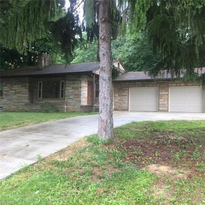 East Palestine Single Family Home For Sale: 1327 Brookdale Avenue