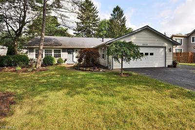 Olmsted Falls Single Family Home For Sale: 8846 Westlawn Boulevard
