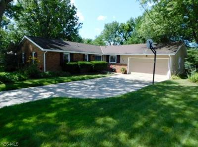 Aurora Single Family Home Active Under Contract: 138 Timber Lane