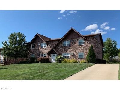 Youngstown Multi Family Home For Sale: 47 Carter Circle