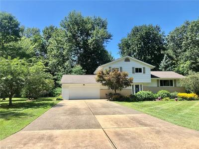 Mentor Single Family Home For Sale: 8356 Dartmoor Road