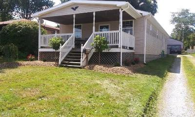 Struthers Single Family Home For Sale: 511 8th Street