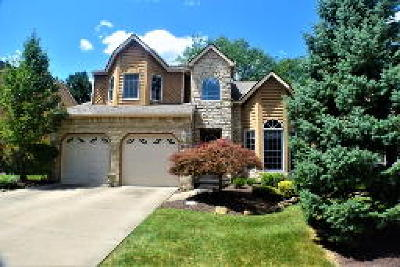 Strongsville Condo/Townhouse Active Under Contract: 14842 Windsor Castle Lane