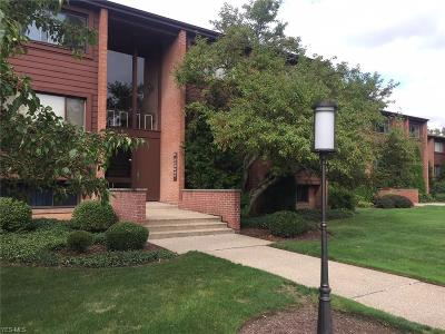 Northfield Condo/Townhouse Active Under Contract: 951 Canyon View Road #202