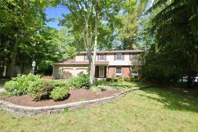 Brecksville Single Family Home For Sale: 10032 Hickory Ridge Drive