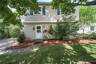 Painesville Single Family Home Active Under Contract: 576 Monroe Boulevard
