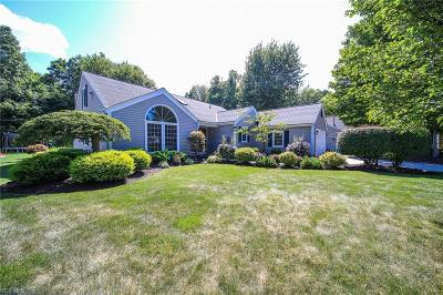 Painesville Single Family Home Active Under Contract: 651 Lanark Lane
