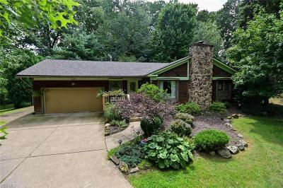 Youngstown Single Family Home Active Under Contract: 1235 Old Furnace Road