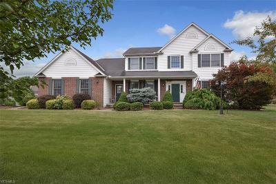 Olmsted Township Single Family Home For Sale: 7012 Shadetree Court