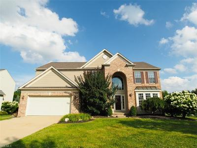 Broadview Heights Single Family Home For Sale: 950 Shelton Circle