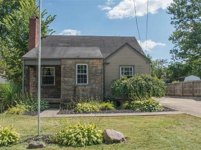Youngstown Single Family Home For Sale: 59 Renwick Drive