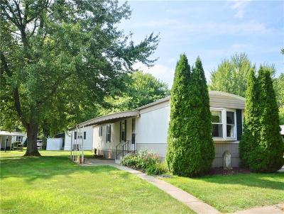 Olmsted Township Single Family Home For Sale: 8 Overland Drive