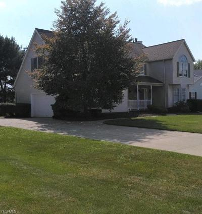 Wadsworth Single Family Home For Sale: 693 Deercrest Drive