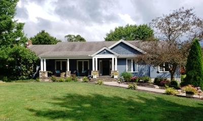Chagrin Falls Single Family Home For Sale: 17425 Long Meadow Trail