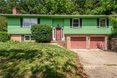 Kent Single Family Home For Sale: 1560 Chadwick Road
