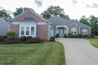 Seven Hills Single Family Home Active Under Contract: 7510 Ludwin Drive