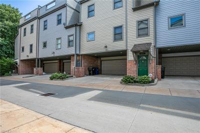 Cleveland Condo/Townhouse For Sale: 1335 W 54 Street #5