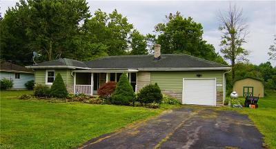 Litchfield Single Family Home Active Under Contract: 9080 Spieth Road