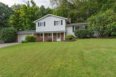 Twinsburg Single Family Home For Sale: 9871 Warren Parkway
