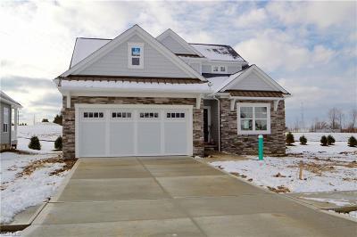 Brecksville Single Family Home For Sale: 10188 Village Lane