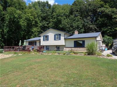 East Palestine Single Family Home For Sale: 5251 Wheathill Road