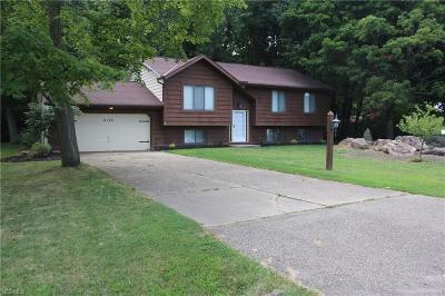 Lake County Single Family Home For Sale: 4130 White Cedar Place