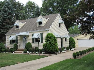 Painesville Single Family Home For Sale: 90 Palmer Avenue