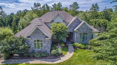 Single Family Home For Sale: 17400 Lookout Drive
