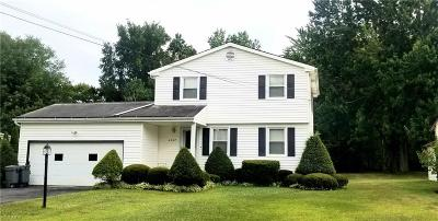 Canfield Single Family Home For Sale: 4347 Timberbrook Drive