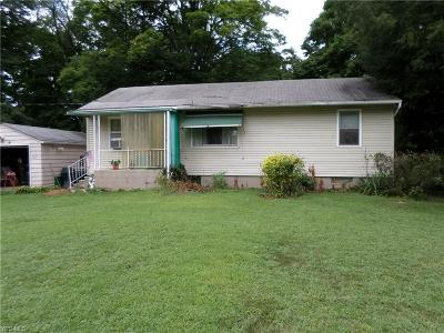 Massillon Single Family Home For Sale: 1165 Bison Street