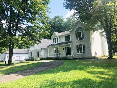 Chagrin Falls Single Family Home For Sale: 9037 Bainbridge Road