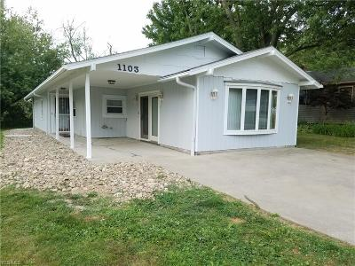 Ashtabula Single Family Home For Sale: 1103 E 17th Street