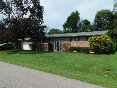 Williamstown Single Family Home For Sale: 415 Valley Manor Lane