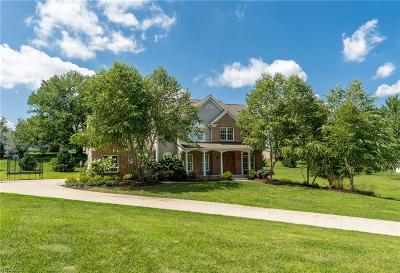 Single Family Home For Sale: 10149 Schlabach Avenue