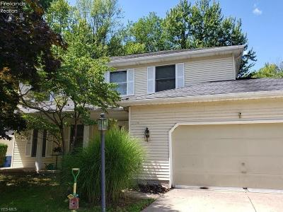 Parma Heights Single Family Home For Sale: 5988 Wilderness Lane