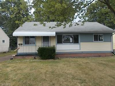 Lorain Single Family Home For Sale: 1132 W 30th