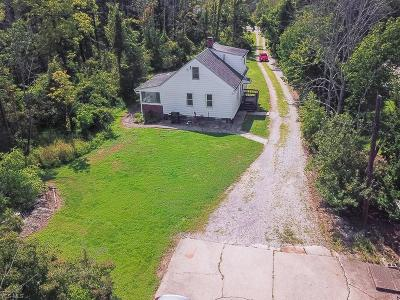 North Royalton Single Family Home For Sale: 18101 State Road