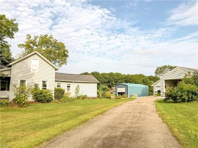 Painesville Single Family Home For Sale: 12498 Girdled Road