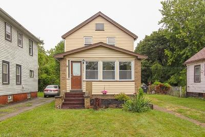 Cleveland Single Family Home For Sale: 15401 Lucknow Avenue