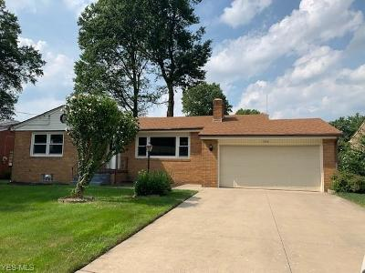 Youngstown Single Family Home For Sale: 388 Argyle Avenue