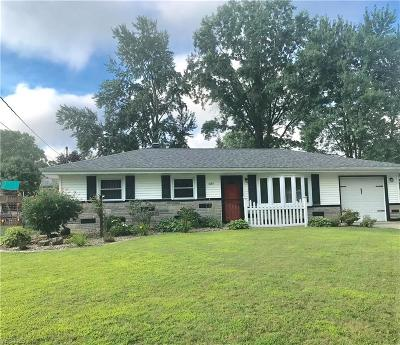 Canfield Single Family Home For Sale: 4529 Plumbrook Drive